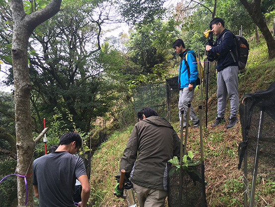 researchers are examining trees on a slope